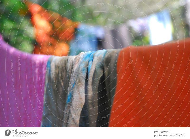 Sommerwäsche Farbe ruhig Sauberkeit Schönes Wetter hängen Wäsche trocknen Handtuch Wäscheleine