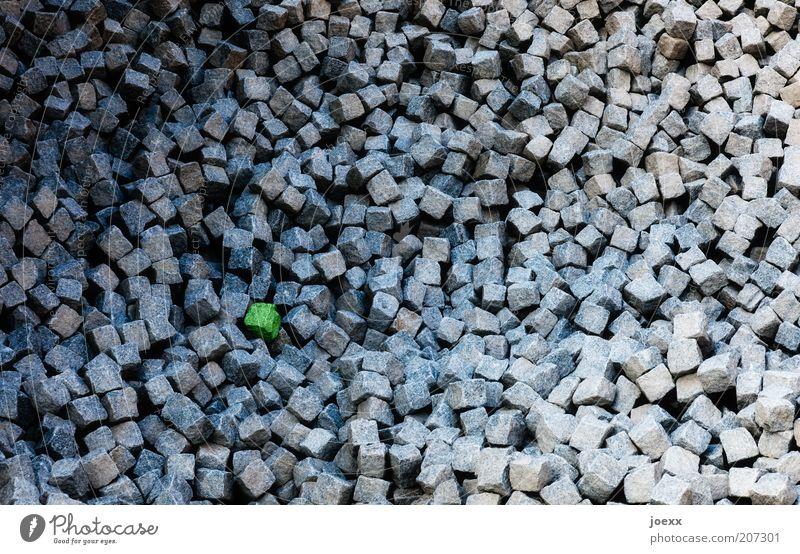 Glashaus grün grau Stein Baustelle Symbole & Metaphern Kopfsteinpflaster viele Material Anhäufung Pflastersteine Zeit Dinge Weitwinkel