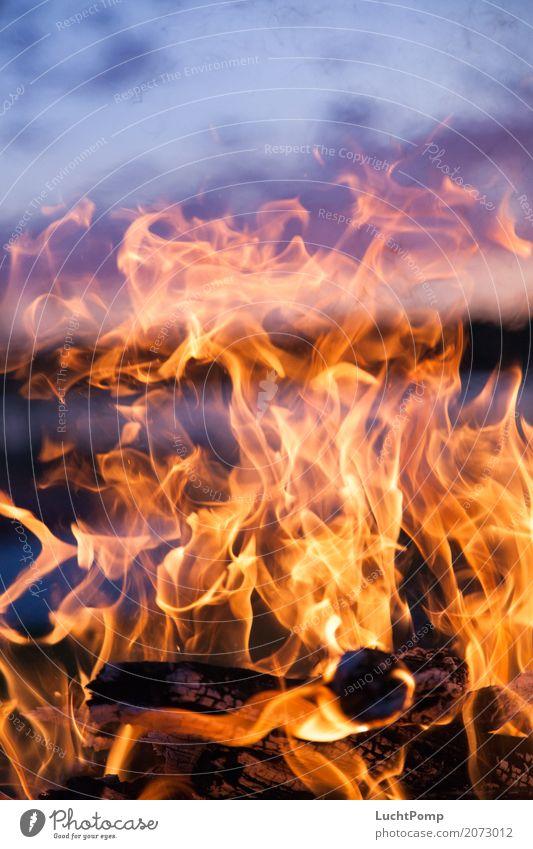Long Nights harmonisch Erholung ruhig Feuer Feuerstelle Lagerfeuerstimmung Holz brennen Flamme Wärme Romantik Glut Kohle gelb orange Kurzzeitbelichtung