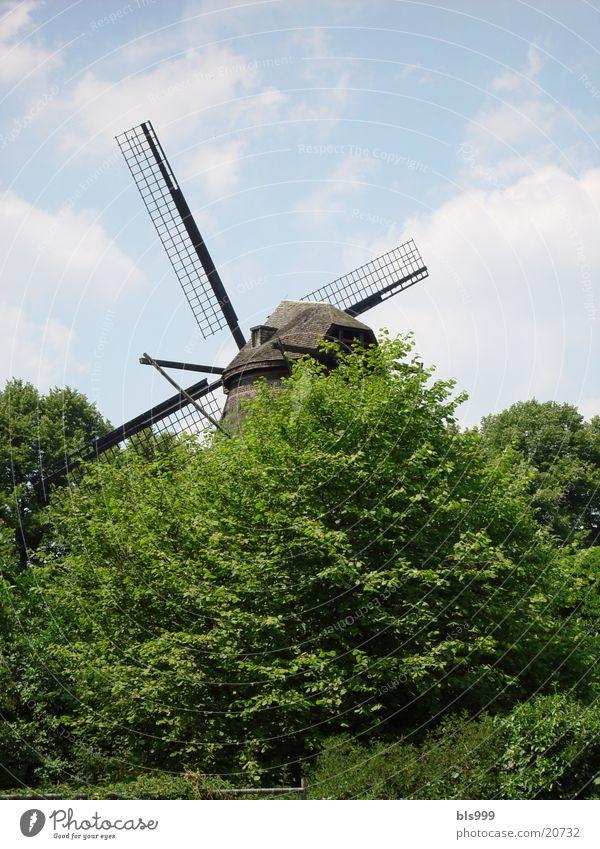 Wo kämpfte Don Quichotte? Windmühle Gebäude Gemäuer Architektur Architketur