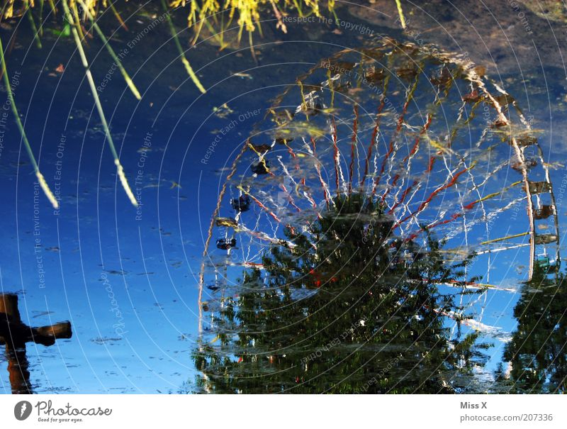 Ufer Natur Wasser See Park Feste & Feiern glänzend Jahrmarkt Seeufer Teich Pfütze Spiegelbild Riesenrad Verzerrung Sonnenlicht Reflexion & Spiegelung Wasserspiegelung