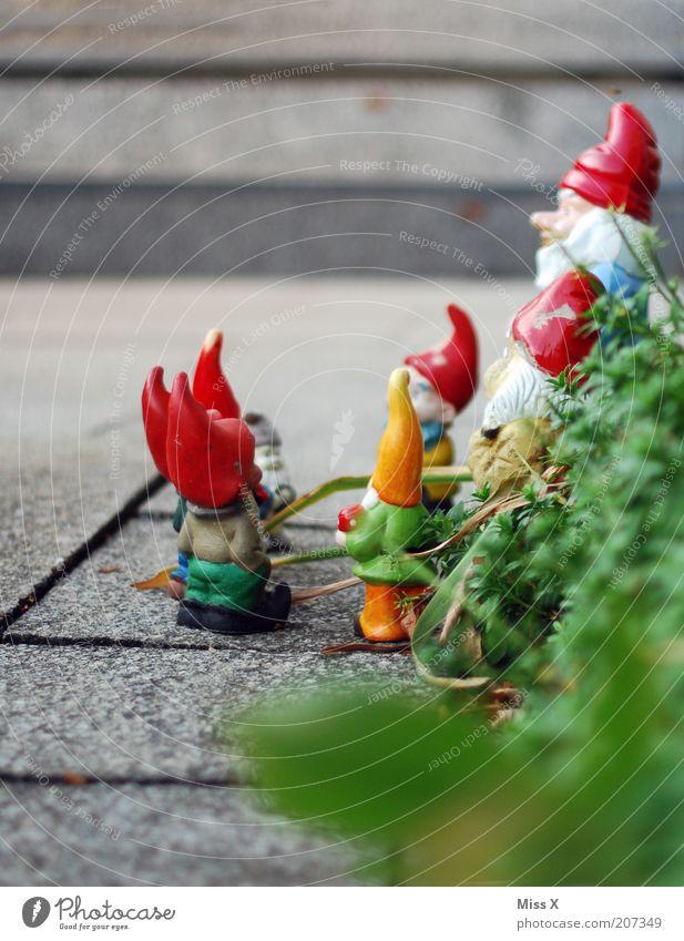 Zwergenaufstand Freizeit & Hobby Häusliches Leben Garten Dekoration & Verzierung Kommunizieren klein Gartenzwerge Nikolausmütze Versammlung Besprechung Farbfoto