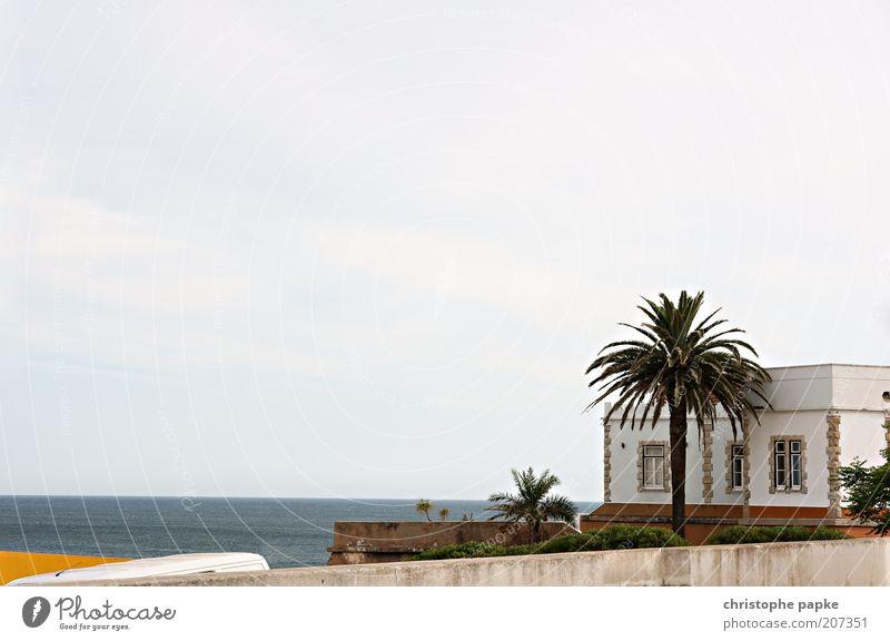 Piratennest Ferien & Urlaub & Reisen Tourismus Ausflug Ferne Freiheit Sommer Sommerurlaub Meer Pflanze exotisch Palme Praia da Luz Portugal Dorf Fischerdorf