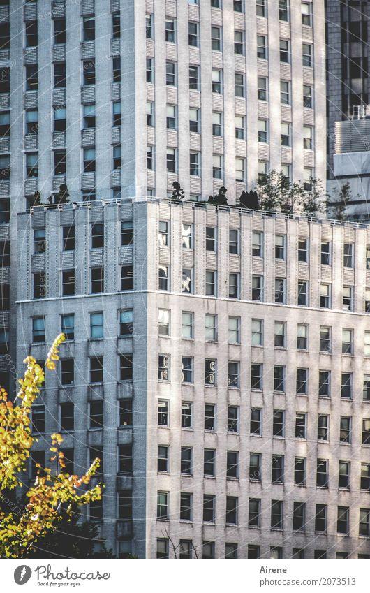 Wohngemeinschaft?   Anonymität Stadt grau Fassade Zusammensein Häusliches Leben Hochhaus Ordnung groß hoch bedrohlich Bauwerk Höhenangst Reichtum gigantisch