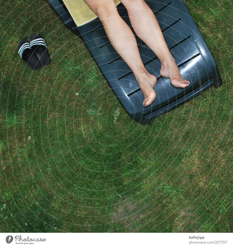 wochenende komm herbei! Frau Natur Ferien & Urlaub & Reisen Pflanze Sommer Erwachsene gelb Umwelt Wiese Leben Gras Wärme Beine Fuß Wetter Freizeit & Hobby