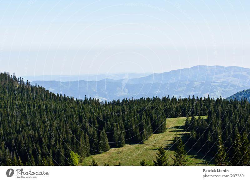 über Berg und Tal Umwelt Natur Landschaft Luft Himmel Wolkenloser Himmel Sommer Klima Wetter Schönes Wetter Baum Wiese Wald Hügel Berge u. Gebirge Stimmung
