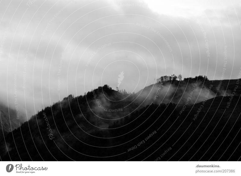 hope of glory Umwelt Natur Landschaft Himmel Wolken Gewitterwolken Unwetter Nebel Dunst ruhig Schwarzweißfoto Außenaufnahme Menschenleer Silhouette