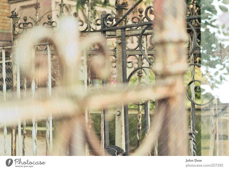 vergittert alt Dekoration & Verzierung Tor Grenze historisch Eingang Zaun Barriere Eisen durcheinander Doppelbelichtung Ornament Gitter Schnörkel Begrenzung