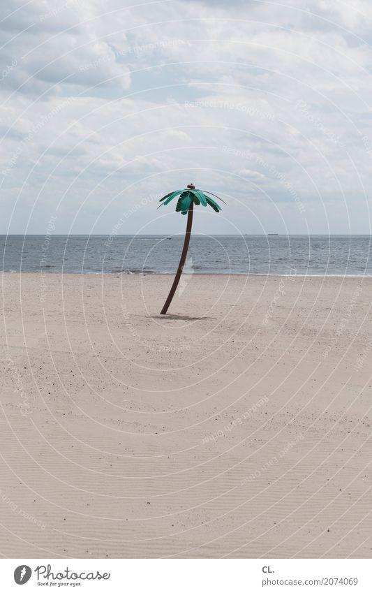 fake palm tree Himmel Natur Ferien & Urlaub & Reisen Wasser Landschaft Meer Wolken Strand Umwelt Küste Tourismus Sand Wetter Wellen Insel Schönes Wetter