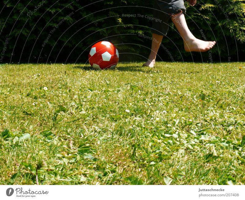 Newtonsches Tangentenverfahren ... Garten Sport Ballsport Fußball treten Mensch maskulin Junge Kindheit Beine 1 Sommer Wiese Bewegung laufen Freude