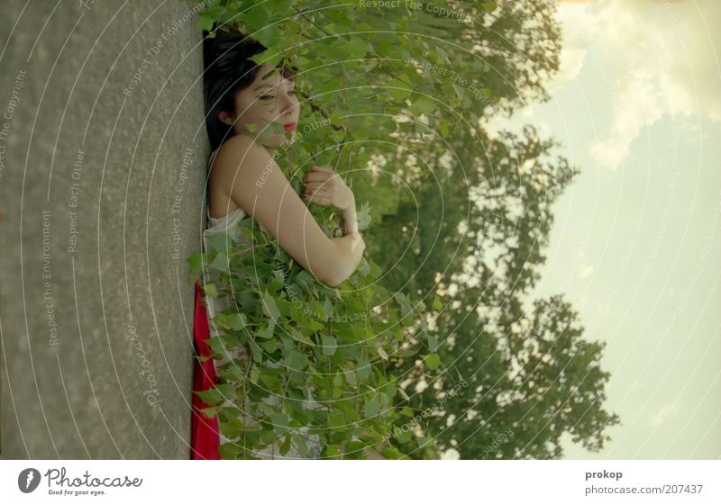 Prägewitterales Bäumekuscheln Mensch feminin Junge Frau Jugendliche Erwachsene Umwelt Natur Pflanze Himmel Wolken Schönes Wetter Baum festhalten Umarmen Duft