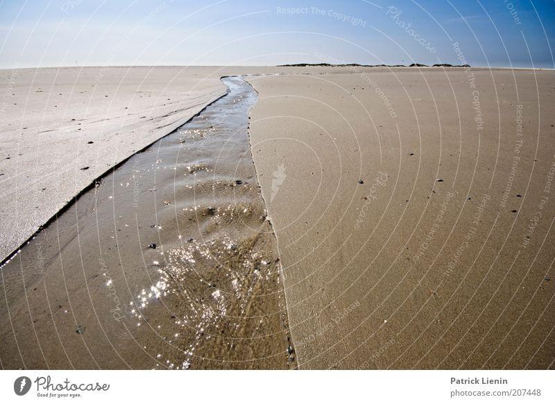 waterway Umwelt Natur Landschaft Urelemente Erde Sand Luft Wasser Himmel Wolkenloser Himmel Horizont Sommer Klima Wetter Schönes Wetter Küste Strand Nordsee