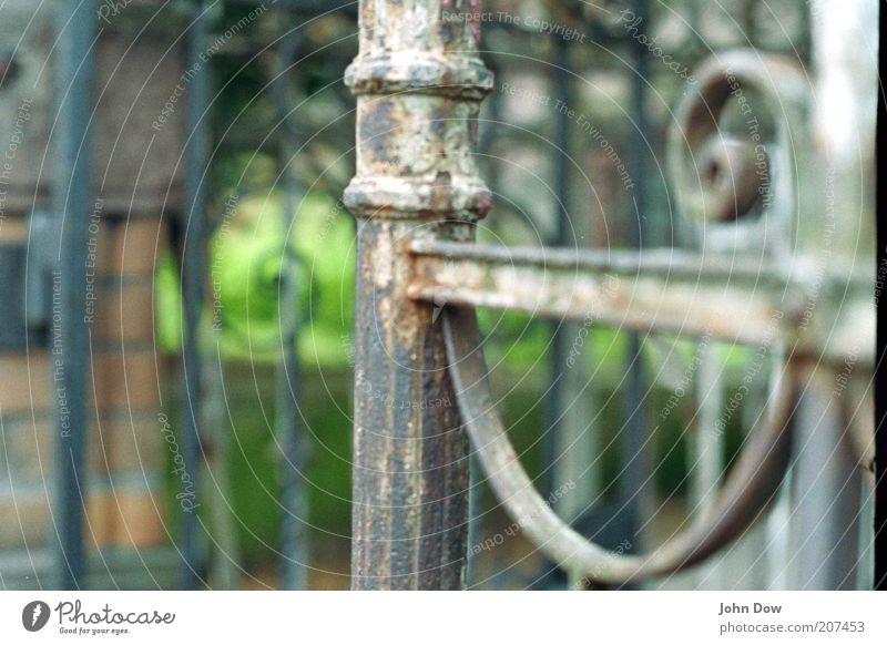 u-förmig Schönes Wetter Tor Mauer Wand Fassade Tür alt historisch Zufriedenheit Schnörkel ornamental Windung Eisen Eingangstor grünen Patina Rost gekrümmt