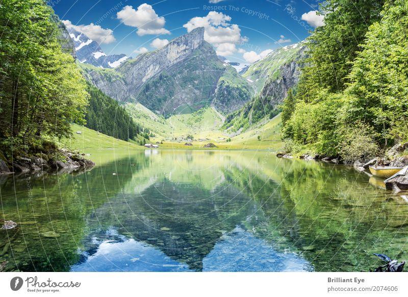 Seealpsee, Appenzeller Alpen Ferien & Urlaub & Reisen Natur Landschaft Wasser Frühling Berge u. Gebirge ästhetisch schön Wärme einzigartig Erholung Idylle rein