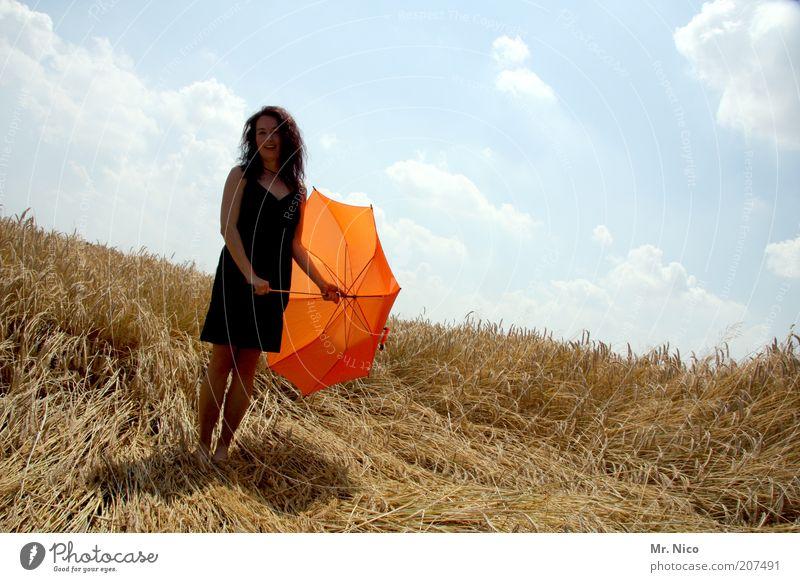 Schirmherrin Frau Natur Himmel Sommer schwarz feminin Glück Wärme Zufriedenheit orange Feld warten Erwachsene Umwelt Kleid dünn