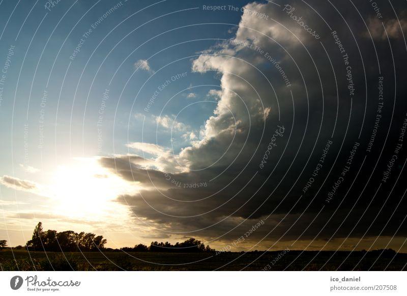 vor dem sturm Natur Landschaft Luft Himmel Wolken Gewitterwolken Horizont Sonne Sonnenaufgang Sonnenuntergang Sonnenlicht Sommer Wetter Schönes Wetter