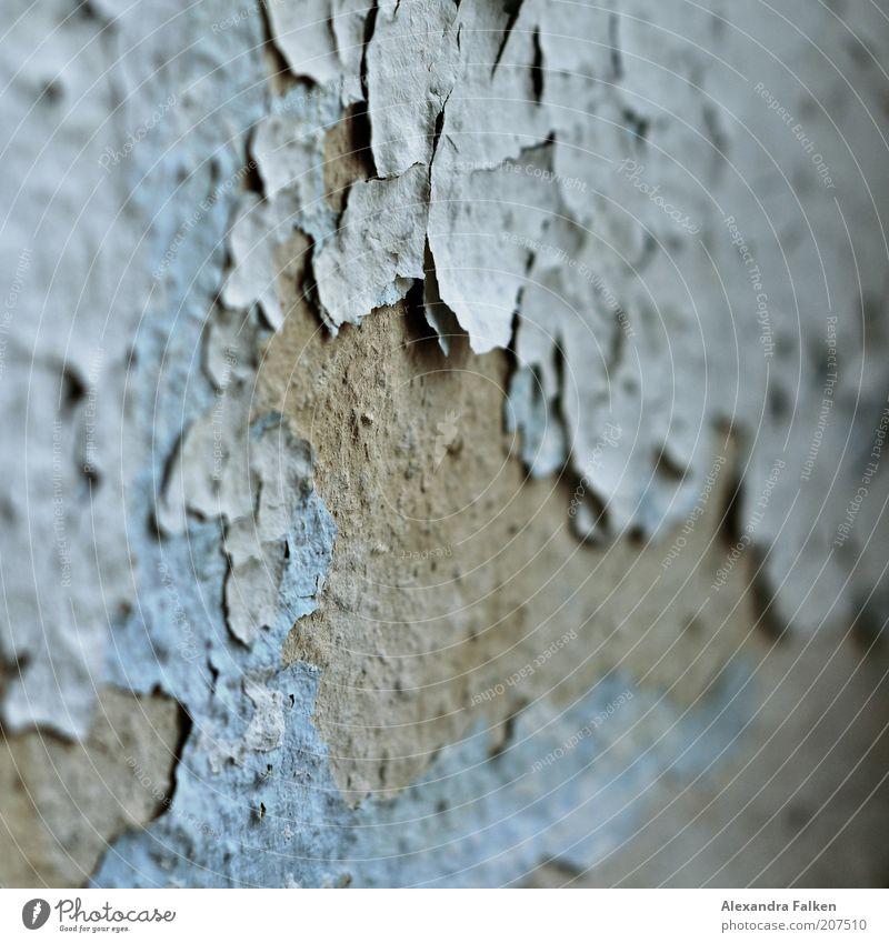Hautalterung II Wand grau Farbstoff Tapete verfallen Verfall Schimmelpilze abblättern hell-blau verwohnt porös Zahn der Zeit