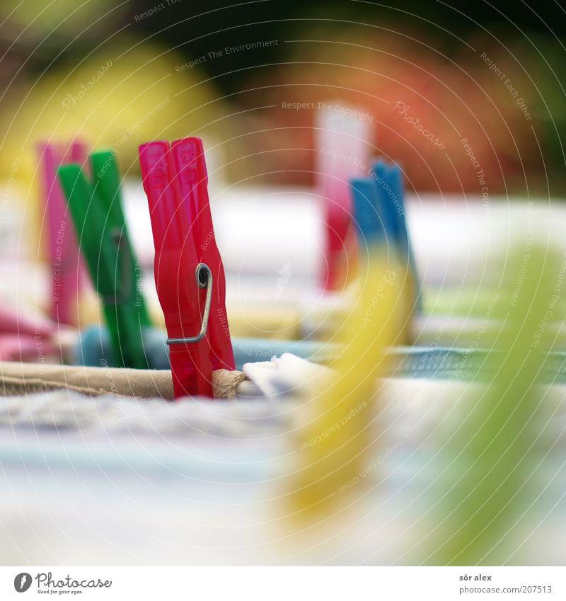 Alltags-Zyklus 2 Wäscheklammern Klammer Kunststoff festhalten hängen Sauberkeit trocken gelb grün rot weiß trocknen Alltagsfotografie Bekleidung Wäsche waschen