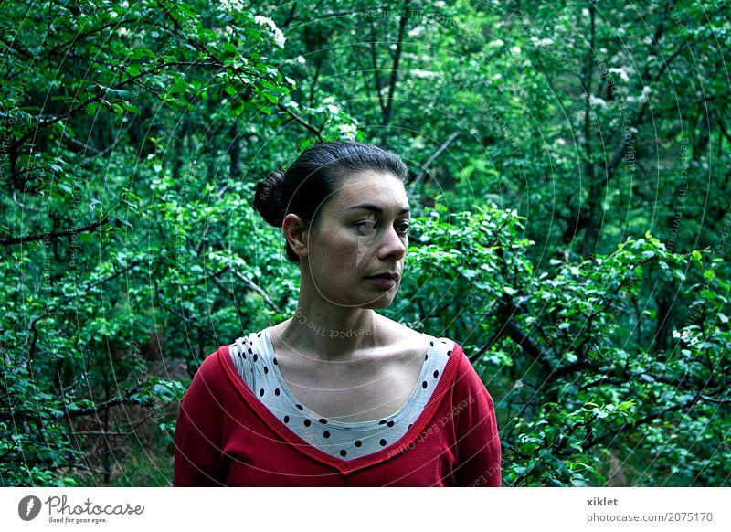 Frau Natur Jugendliche grün Baum rot Wald Gesicht Traurigkeit Frühling Behaarung Luft Sträucher tief Seite Hals
