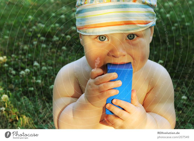 """""""Dich angucken."""" Mensch Kind Baby 1 0-12 Monate Essen Blick Kopftuch Mütze nackt Babyaugen Wiese Sommer mehrfarbig lutschen Bauklotz Spielen Spielzeug blau grün"""