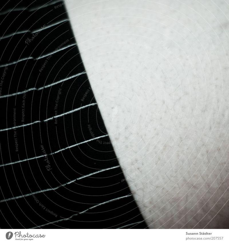 wohlführen. maskulin Mann Erwachsene Haut Rücken Bauch frieren Gänsehaut Unterhose Streifen Behaarung Pore Baumwolle graphisch Am Rand Hosenbund Innenaufnahme