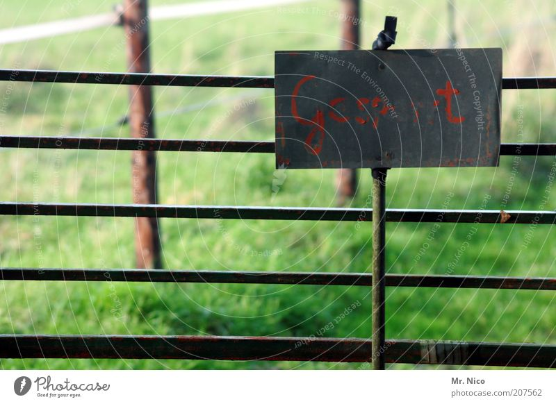 Gcsp t Natur alt grün rot Wiese Gras Schilder & Markierungen Sicherheit Ordnung Schriftzeichen Buchstaben verfallen Hinweisschild Weide Zaun Barriere