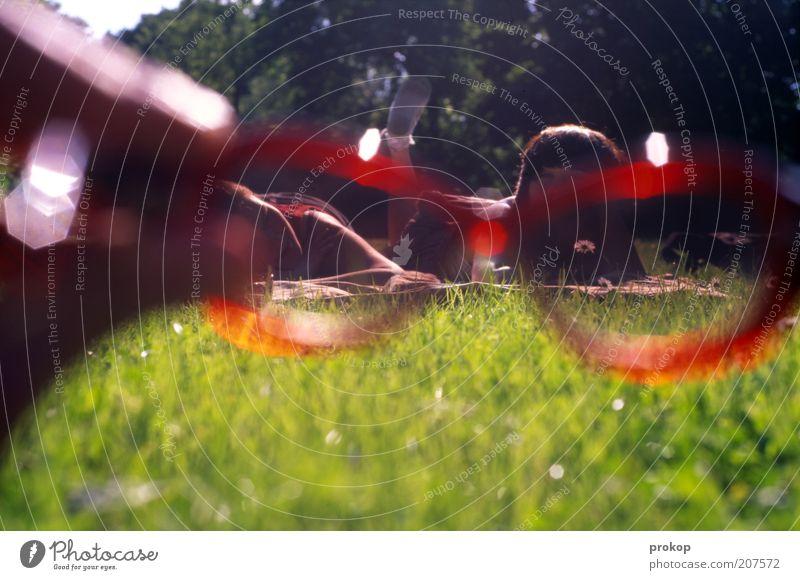 Halt doch mal gerade Mensch! Frau Natur Jugendliche schön rot Sommer Erholung feminin Wiese sprechen Umwelt Gefühle Gras Glück