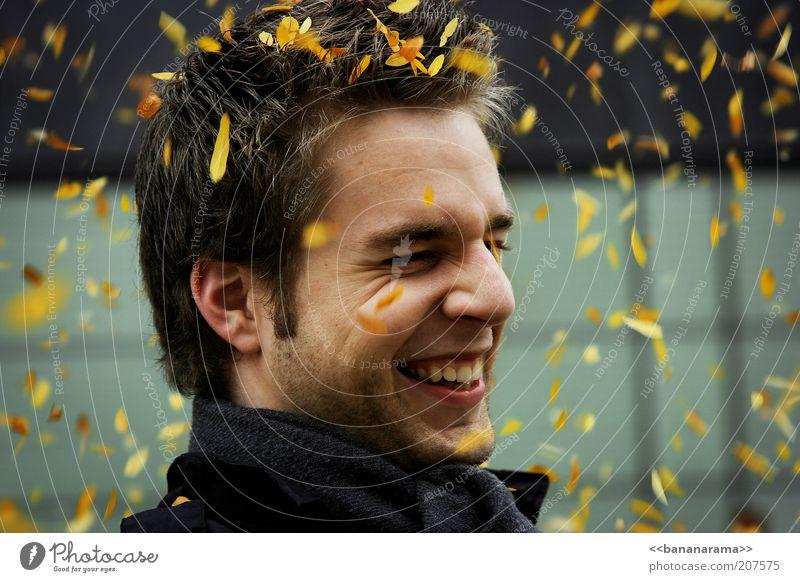All the leaves are yellow Haare & Frisuren Gesicht harmonisch maskulin Junger Mann Jugendliche Erwachsene Kopf 18-30 Jahre Herbst Wind Lächeln lachen gelb grau