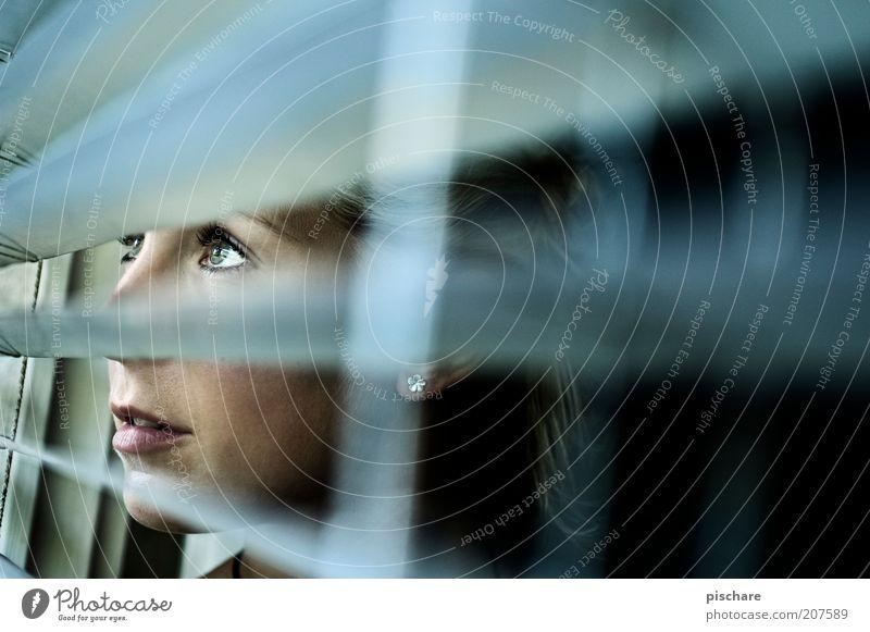 absolut curious feminin Junge Frau Jugendliche Kopf Auge 1 Mensch 18-30 Jahre Erwachsene Fenster beobachten Blick warten Neugier blau Wachsamkeit Jalousie Linie