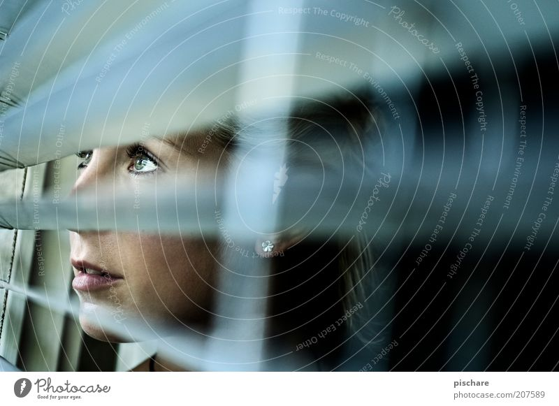 absolut curious Mensch Jugendliche blau Gesicht Auge feminin Fenster grau Kopf Linie warten blond Erwachsene beobachten Neugier entdecken
