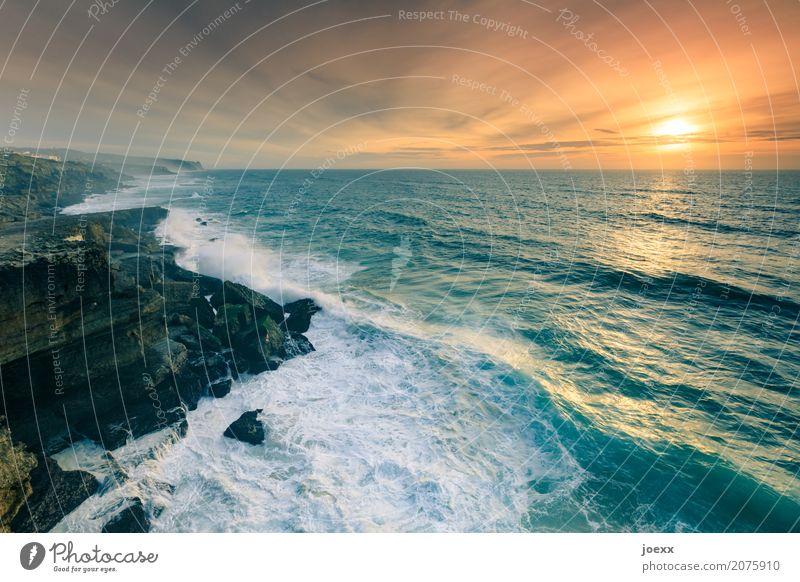 Über dem Meer Ferien & Urlaub & Reisen Ferne Freiheit Sonne Landschaft Himmel Wolken Horizont Sommer Schönes Wetter Felsen Wellen Küste schön wild blau braun