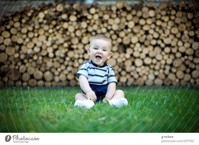 Sonnenschein Mensch Kind blau grün Freude Tierjunges Gefühle Gras klein lachen Holz Glück natürlich braun Stimmung maskulin