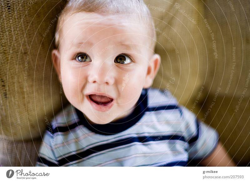Juliusz Mensch Kind schön klein Glück Kopf maskulin blond sitzen Fröhlichkeit Mund Baby niedlich Neugier T-Shirt Sofa
