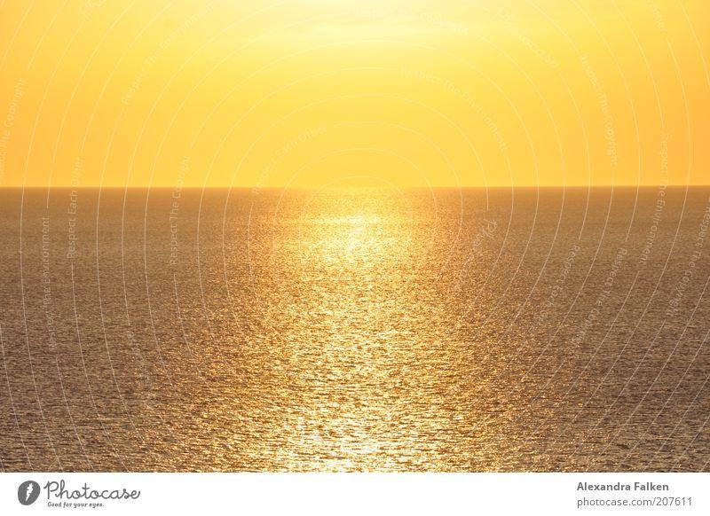 Sonne trifft Meer. Sommer ruhig gelb Ferne Wärme Luft Erde orange gold Horizont Unendlichkeit Sonnenaufgang harmonisch Abenddämmerung
