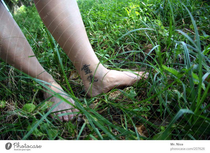 reiki Wohlgefühl Zufriedenheit Erholung ruhig Haut Beine Fuß Gras Wiese Tattoo grün Barfuß Reiki Wade Zehen Frauenbein Gesundheit Spiritualität