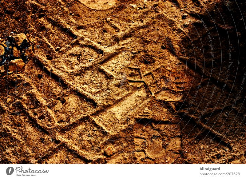 Profilneurose Erde trocken Spuren Reifenprofil Sand Abdruck Farbfoto Detailaufnahme Menschenleer Tag Schatten Kontrast Silhouette Sonnenlicht Fährte Fußspur