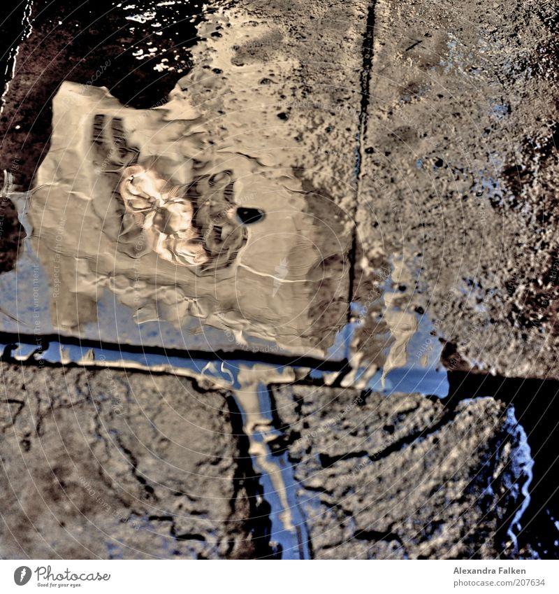 Kirche in Pfütze Wasser Stein Gebäude nass Bürgersteig London England Pflastersteine Wege & Pfade Kultur Sehenswürdigkeit Bodenplatten Bodenbelag