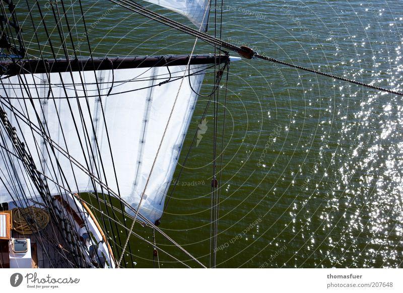 Discovery Segeln Ferien & Urlaub & Reisen Abenteuer Freiheit Kreuzfahrt Expedition Sommer Meer Wellen Wasser Schönes Wetter Ostsee Schifffahrt Segelschiff schön