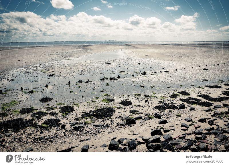 *300* Spurensuche Ferien & Urlaub & Reisen Tourismus Sommer Sommerurlaub Strand Meer Insel Wellen Himmel Wolken Horizont Schönes Wetter Küste Nordsee Ebbe