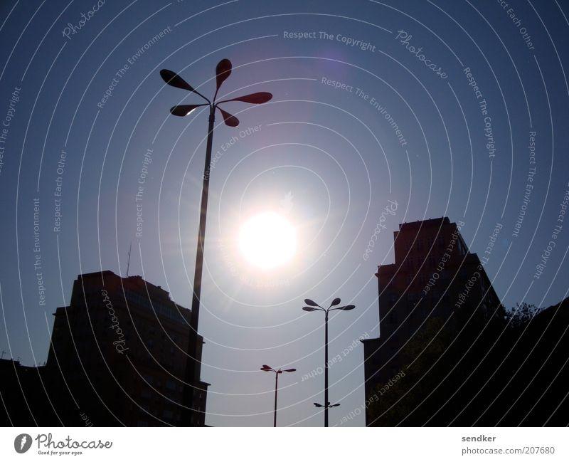 Licht im Dunkel Sonne Stadt blau ruhig schwarz Haus Gebäude groß Hochhaus ästhetisch Bauwerk Schönes Wetter Straßenbeleuchtung Blauer Himmel Laternenpfahl Silhouette