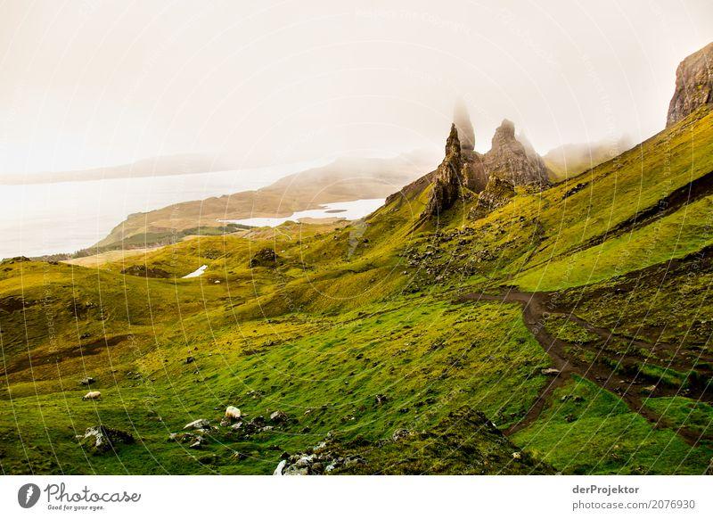 Old Man of Storr 1 Natur Ferien & Urlaub & Reisen Pflanze Sommer Landschaft Meer Ferne Berge u. Gebirge Umwelt Küste Freiheit Tourismus Felsen Regen wandern
