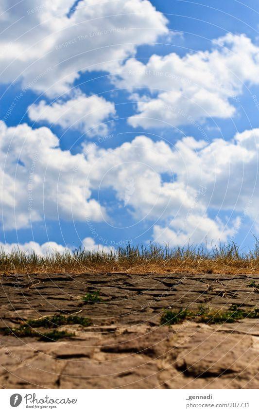 [100] Ab in den Himmel Sommer Wolken Gras Stein Wege & Pfade Wärme Himmel (Jenseits) Umwelt trocken Schönes Wetter Blauer Himmel Dürre himmelblau Verkehrswege
