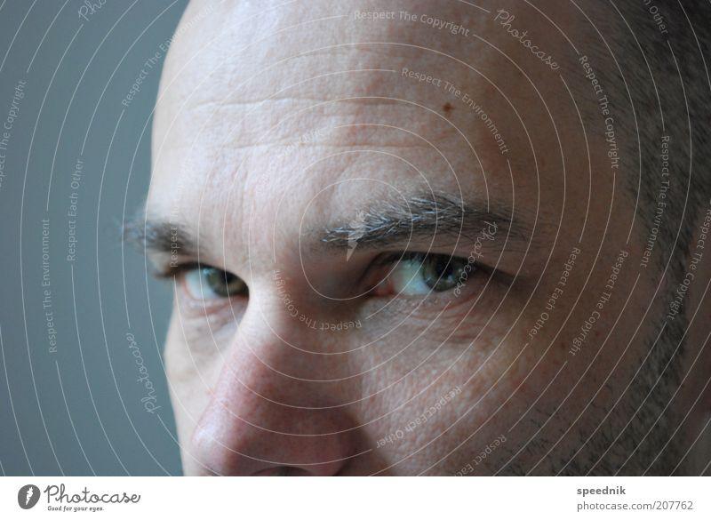 Ausschnitt Mensch Mann blau ruhig Auge kalt grau Haare & Frisuren Erwachsene Denken maskulin Coolness Hautfalten Gelassenheit Glatze selbstbewußt
