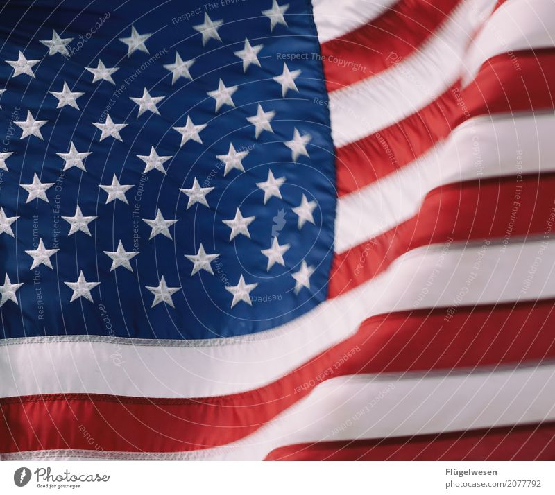 Good old America Amerika Amerikaner USA Stars and Stripes Fahne Nationalitäten u. Ethnien Patriotismus Trump Präsident Stoff Fahnenmast wehen Wind