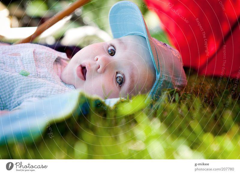 Juliusz Mensch Kind schön Sommer Erholung Gefühle klein Glück natürlich hell Kopf liegen maskulin Kindheit Baby niedlich