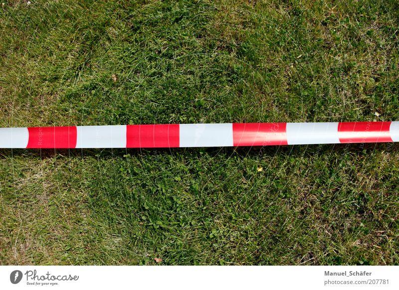 Grenze Wiese Schilder & Markierungen Linie Streifen Schnur rot Sicherheit Verbote Barriere Zutritt verweigern stoppen Farbfoto Außenaufnahme Menschenleer