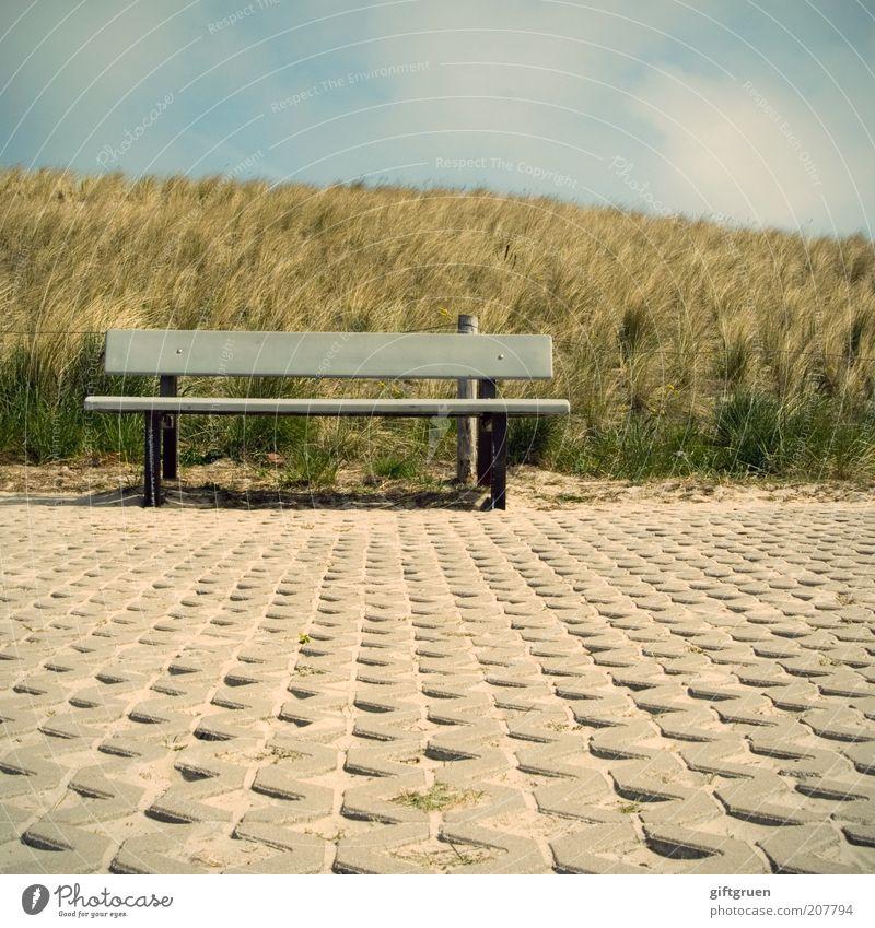 verweilen im vorübergehen Landschaft Sommer Pflanze Gras Hügel Küste warten Dünengras Bank Sitzgelegenheit Steinboden Himmel bedeckt Wolken Pause Erholung