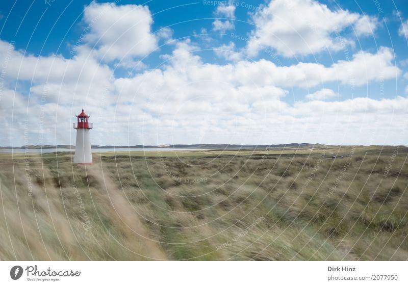 Leuchtturm in List auf Sylt Himmel Natur Ferien & Urlaub & Reisen Pflanze Sommer Meer Wolken Ferne Küste Freiheit Tourismus Horizont Insel Richtung Sommerurlaub
