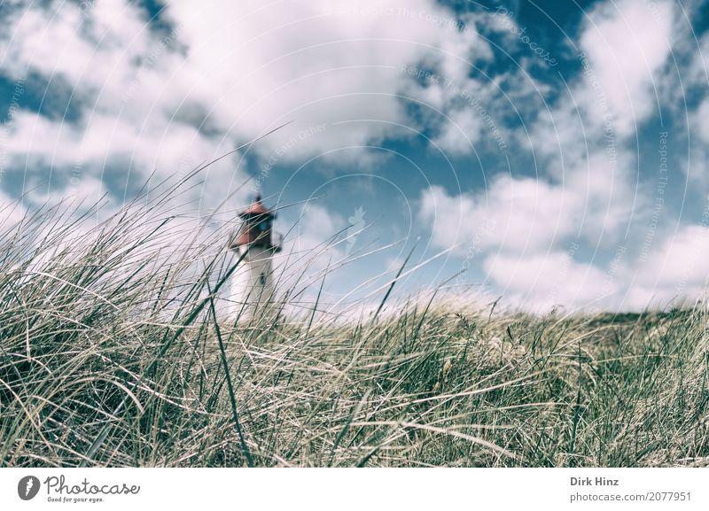 Leuchtturm in List auf Sylt Strand Meer Insel Natur Wasser Pflanze Gras Wildpflanze Küste Nordsee Sicherheit Tourismus Tradition Nordfriesland