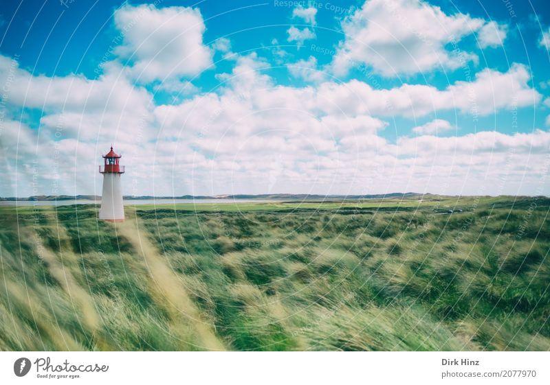 Leuchtturm List (West) I Natur Sommer Meer Wolken Ferne Umwelt Gras Freiheit Tourismus Insel Sicherheit Richtung Sommerurlaub Tradition Nordsee Umweltschutz